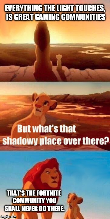 Simba Shadowy Place Meme | EVERYTHING THE LIGHT TOUCHES, IS GREAT GAMING COMMUNITIES THAT'S THE FORTNITE COMMUNITY YOU SHALL NEVER GO THERE. | image tagged in memes,simba shadowy place | made w/ Imgflip meme maker
