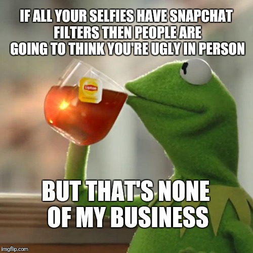 But Thats None Of My Business | IF ALL YOUR SELFIES HAVE SNAPCHAT FILTERS THEN PEOPLE ARE GOING TO THINK YOU'RE UGLY IN PERSON BUT THAT'S NONE OF MY BUSINESS | image tagged in memes,but thats none of my business,kermit the frog | made w/ Imgflip meme maker