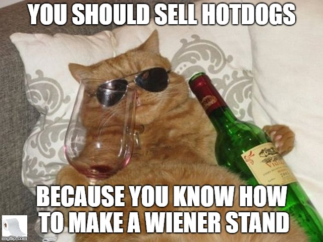 The Hot Dog Stand! | YOU SHOULD SELL HOTDOGS BECAUSE YOU KNOW HOW TO MAKE A WIENER STAND | image tagged in cool kitty,hot dog cat,wiener,funny drunk cat | made w/ Imgflip meme maker