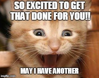 Excited Cat Meme | SO EXCITED TO GET THAT DONE FOR YOU!! MAY I HAVE ANOTHER | image tagged in memes,excited cat | made w/ Imgflip meme maker