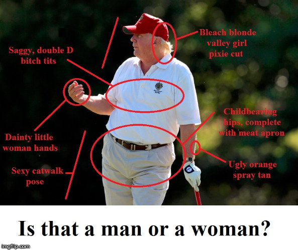 Is that a man or a woman? | image tagged in trump,man or woman,orange hitler,republicans,conservatives | made w/ Imgflip meme maker