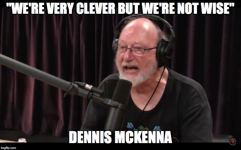 """WE'RE VERY CLEVER BUT WE'RE NOT WISE"" DENNIS MCKENNA 