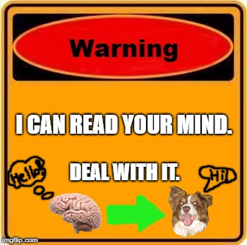 I can read your mind! >:D | I CAN READ YOUR MIND. DEAL WITH IT. | image tagged in memes,warning sign,chili the border collie,dogs,border collie | made w/ Imgflip meme maker