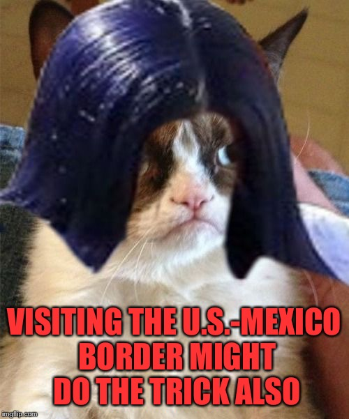 Grumpy doMima (flipped) | VISITING THE U.S.-MEXICO BORDER MIGHT DO THE TRICK ALSO | image tagged in grumpy domima flipped | made w/ Imgflip meme maker