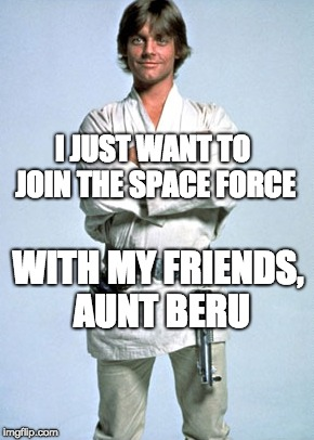 use the space force | I JUST WANT TO JOIN THE SPACE FORCE WITH MY FRIENDS, AUNT BERU | image tagged in luke skywalker,space force,donald trump | made w/ Imgflip meme maker