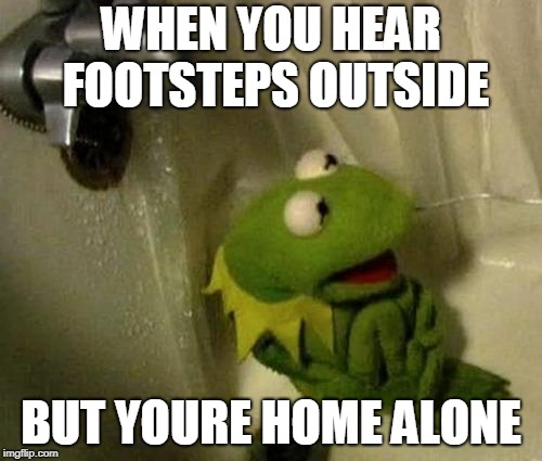 Kermit on Shower | WHEN YOU HEAR FOOTSTEPS OUTSIDE BUT YOURE HOME ALONE | image tagged in kermit on shower | made w/ Imgflip meme maker