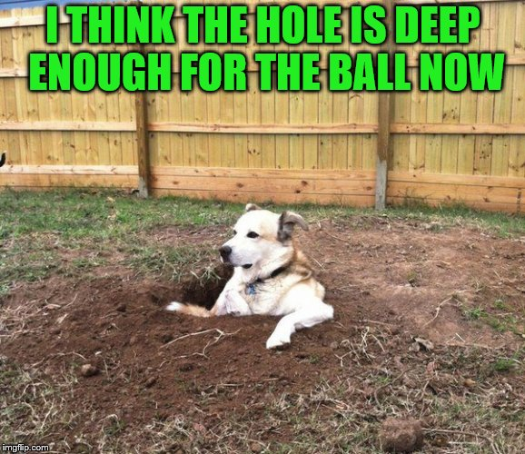 I THINK THE HOLE IS DEEP ENOUGH FOR THE BALL NOW | made w/ Imgflip meme maker