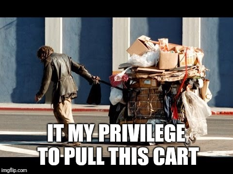 IT MY PRIVILEGE TO PULL THIS CART | made w/ Imgflip meme maker