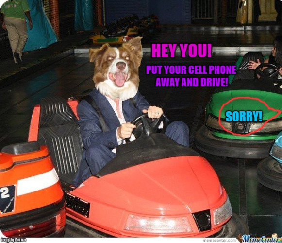 Bumper car | HEY YOU! PUT YOUR CELL PHONE AWAY AND DRIVE! SORRY! | image tagged in bumper car | made w/ Imgflip meme maker