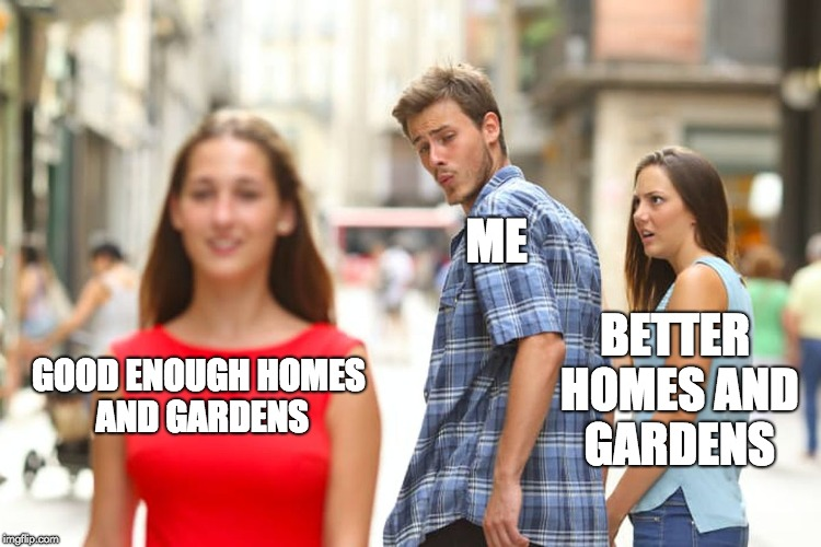 Distracted Boyfriend Meme | GOOD ENOUGH HOMES AND GARDENS ME BETTER HOMES AND GARDENS | image tagged in memes,distracted boyfriend | made w/ Imgflip meme maker