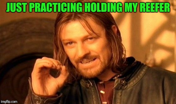 One Does Not Simply Meme | JUST PRACTICING HOLDING MY REEFER | image tagged in memes,one does not simply | made w/ Imgflip meme maker