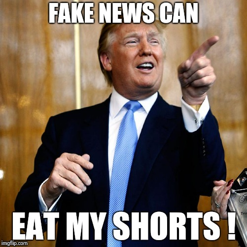 FAKE NEWS CAN | image tagged in trump replys | made w/ Imgflip meme maker