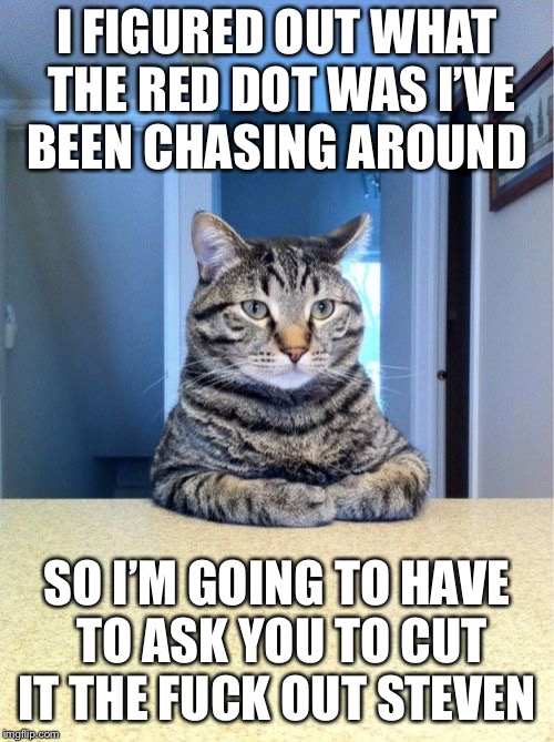 Take A Seat Cat Meme | I FIGURED OUT WHAT THE RED DOT WAS I'VE BEEN CHASING AROUND SO I'M GOING TO HAVE TO ASK YOU TO CUT IT THE F**K OUT STEVEN | image tagged in memes,take a seat cat | made w/ Imgflip meme maker