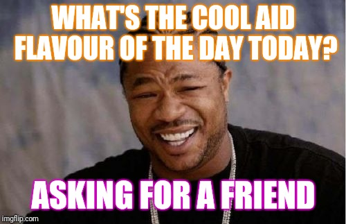 Yo Dawg Heard You Meme | WHAT'S THE COOL AID FLAVOUR OF THE DAY TODAY? ASKING FOR A FRIEND | image tagged in memes,yo dawg heard you | made w/ Imgflip meme maker