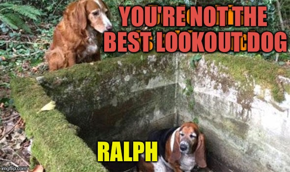 YOU'RE NOT THE BEST LOOKOUT DOG RALPH | made w/ Imgflip meme maker
