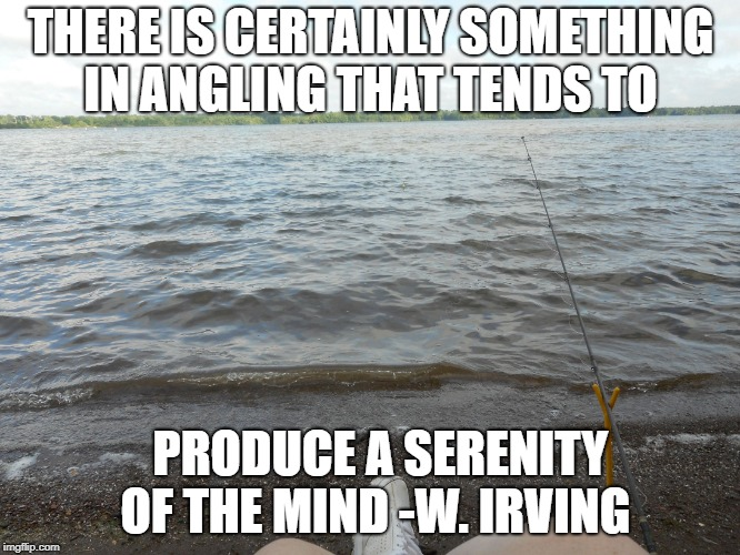 THERE IS CERTAINLY SOMETHING IN ANGLING THAT TENDS TO PRODUCE A SERENITY OF THE MIND -W. IRVING | image tagged in fishing at the lake | made w/ Imgflip meme maker