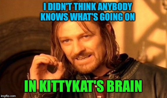 One Does Not Simply Meme | I DIDN'T THINK ANYBODY KNOWS WHAT'S GOING ON IN KITTYKAT'S BRAIN | image tagged in memes,one does not simply | made w/ Imgflip meme maker