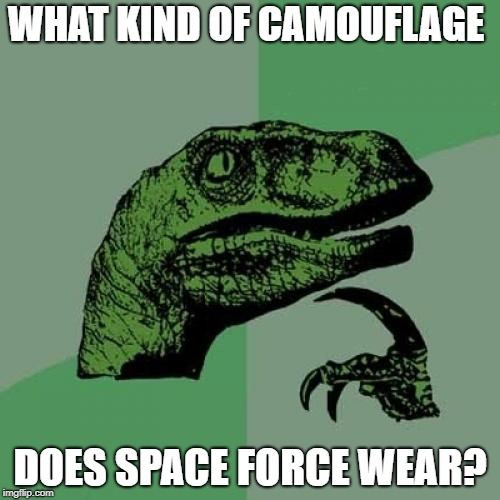 Philosoraptor Meme | WHAT KIND OF CAMOUFLAGE DOES SPACE FORCE WEAR? | image tagged in memes,philosoraptor | made w/ Imgflip meme maker