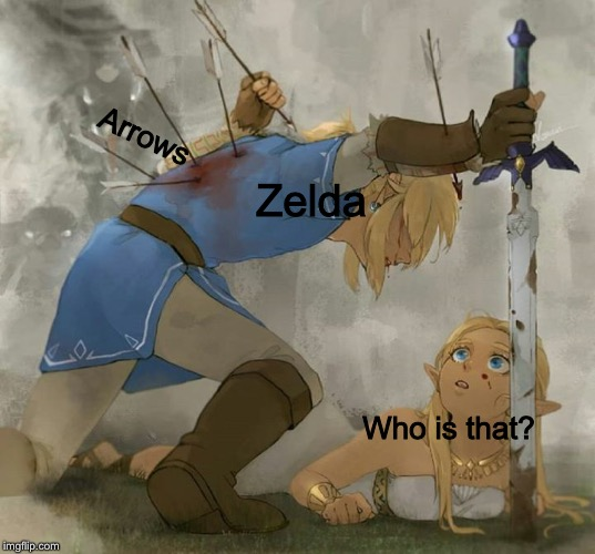 *singing* THESE MEMES ARE STUUUUPID  | Arrows Zelda Who is that? | image tagged in zelda,legend of zelda,the legend of zelda,the legend of zelda breath of the wild,link | made w/ Imgflip meme maker
