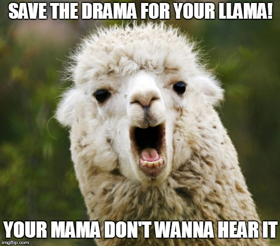 SAVE THE DRAMA FOR YOUR LLAMA! YOUR MAMA DON'T WANNA HEAR IT | image tagged in mama llama | made w/ Imgflip meme maker