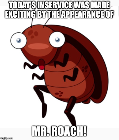TODAY'S INSERVICE WAS MADE EXCITING BY THE APPEARANCE OF MR. ROACH! | image tagged in mr roach,inservice | made w/ Imgflip meme maker