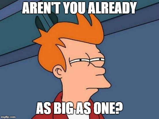 Futurama Fry Meme | AREN'T YOU ALREADY AS BIG AS ONE? | image tagged in memes,futurama fry | made w/ Imgflip meme maker