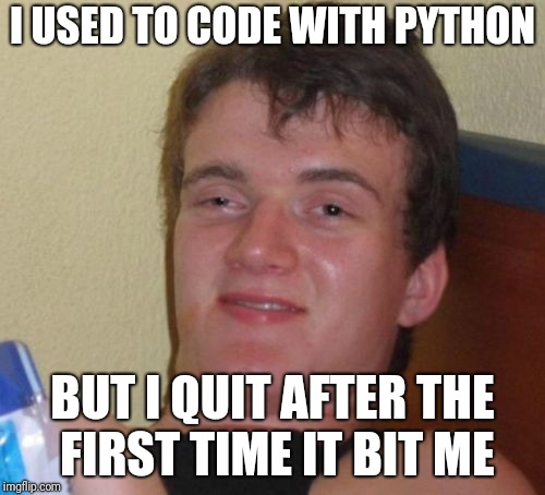 Watch out or it'll eat you whole | I USED TO CODE WITH PYTHON BUT I QUIT AFTER THE FIRST TIME IT BIT ME | image tagged in memes,10 guy,programming,python | made w/ Imgflip meme maker
