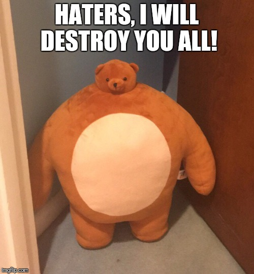Haters beware! | HATERS, I WILL DESTROY YOU ALL! | image tagged in buff teddy bear,will,destroy,haters,bear,buff | made w/ Imgflip meme maker