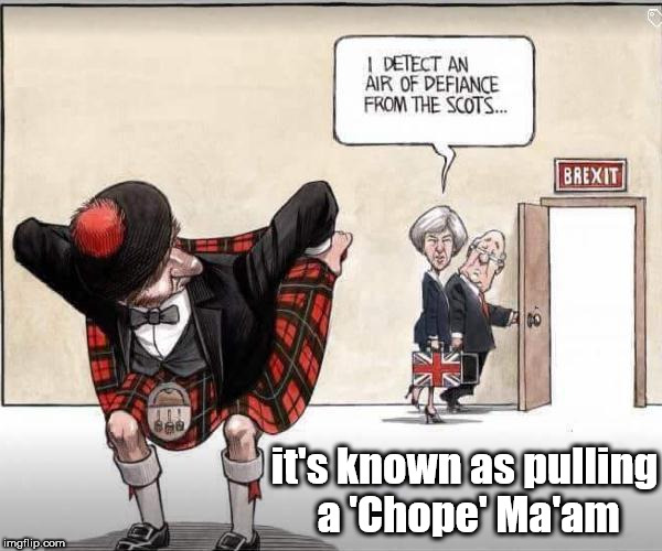 Upskirting - Pulling a 'Chope' | it's known as pulling a 'Chope' Ma'am | image tagged in pulling a 'chope',upskirting,brexit,sturgeon,scots,theresa may | made w/ Imgflip meme maker