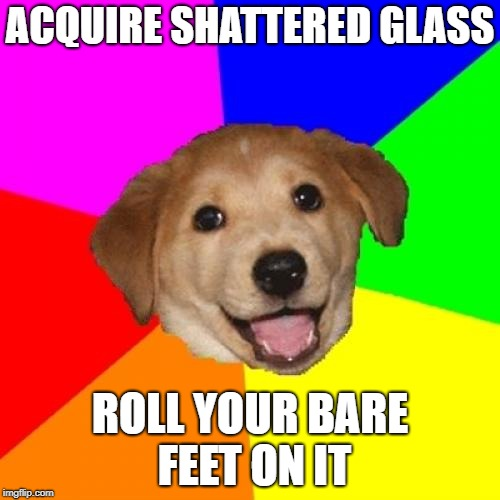 Advice Dog Meme | ACQUIRE SHATTERED GLASS ROLL YOUR BARE FEET ON IT | image tagged in memes,advice dog,AdviceAnimals | made w/ Imgflip meme maker
