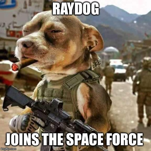 RAYDOG JOINS THE SPACE FORCE | image tagged in raydog | made w/ Imgflip meme maker