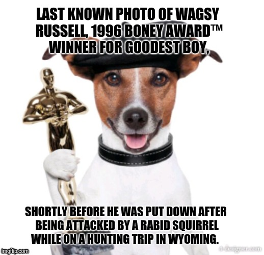 Award winning doggo | LAST KNOWN PHOTO OF WAGSY RUSSELL, 1996 BONEY AWARD™ WINNER FOR GOODEST BOY, SHORTLY BEFORE HE WAS PUT DOWN AFTER BEING ATTACKED BY A RABID  | image tagged in award winning doggo,doggo,award | made w/ Imgflip meme maker