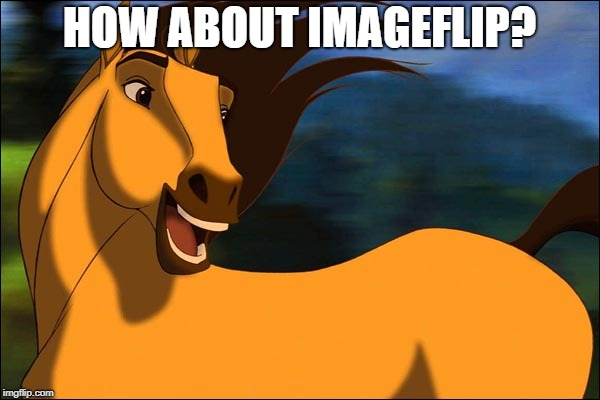 Spirit | HOW ABOUT IMAGEFLIP? | image tagged in spirit | made w/ Imgflip meme maker
