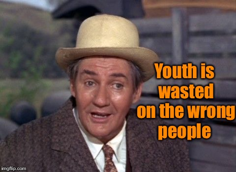 Wasted youth | Youth is wasted on the wrong people | image tagged in funny memes,green acres,youth,waste of time,truth hurts | made w/ Imgflip meme maker