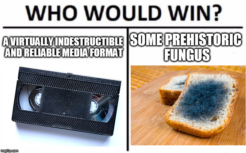 Who Would Win? Meme | A VIRTUALLY INDESTRUCTIBLE AND RELIABLE MEDIA FORMAT SOME PREHISTORIC FUNGUS | image tagged in memes,who would win,VHS | made w/ Imgflip meme maker