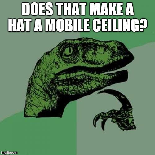 Philosoraptor Meme | DOES THAT MAKE A HAT A MOBILE CEILING? | image tagged in memes,philosoraptor | made w/ Imgflip meme maker