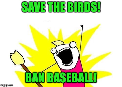 X All The Y Meme | SAVE THE BIRDS! BAN BASEBALL! | image tagged in memes,x all the y | made w/ Imgflip meme maker