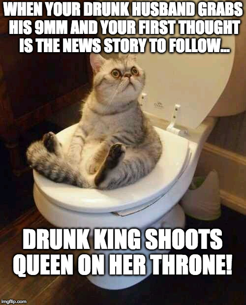 Toilet cat | WHEN YOUR DRUNK HUSBAND GRABS HIS 9MM AND YOUR FIRST THOUGHT IS THE NEWS STORY TO FOLLOW... DRUNK KING SHOOTS QUEEN ON HER THRONE! | image tagged in toilet cat | made w/ Imgflip meme maker