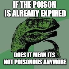 Dinosaur | IF THE POISON IS ALREADY EXPIRED DOES IT MEAN ITS NOT POISONOUS ANYMORE | image tagged in dinosaur | made w/ Imgflip meme maker