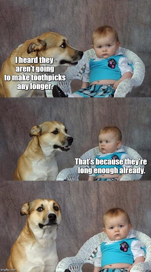 Dad Joke Dog | I heard they aren't going to make toothpicks any longer. That's because they're long enough already. | image tagged in memes,dad joke dog | made w/ Imgflip meme maker
