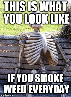 Waiting Skeleton Meme | THIS IS WHAT YOU LOOK LIKE IF YOU SMOKE WEED EVERYDAY | image tagged in memes,waiting skeleton | made w/ Imgflip meme maker