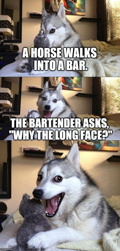 "Bad Pun Dog | A HORSE WALKS INTO A BAR. THE BARTENDER ASKS, ""WHY THE LONG FACE?"" 