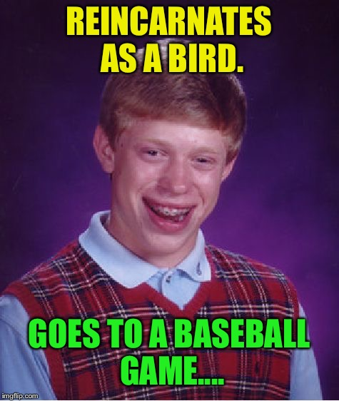 Bad Luck Brian Meme | REINCARNATES AS A BIRD. GOES TO A BASEBALL GAME.... | image tagged in memes,bad luck brian | made w/ Imgflip meme maker