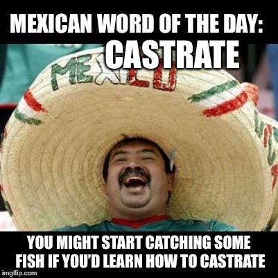 Mexican Word of the Day (LARGE) | CASTRATE YOU MIGHT START CATCHING SOME FISH IF YOU'D LEARN HOW TO CASTRATE | image tagged in mexican word of the day large | made w/ Imgflip meme maker