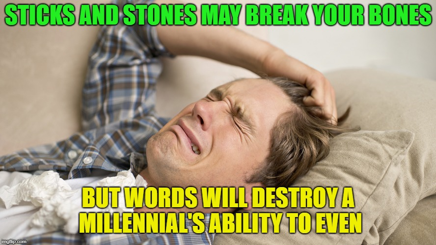 Millennials, they are the future..... | STICKS AND STONES MAY BREAK YOUR BONES BUT WORDS WILL DESTROY A MILLENNIAL'S ABILITY TO EVEN | image tagged in millennial,memes,funny,growing up | made w/ Imgflip meme maker