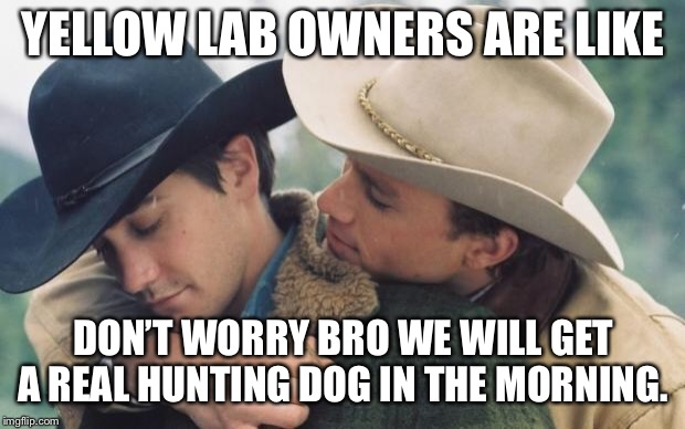 Broke back mountain | YELLOW LAB OWNERS ARE LIKE DON'T WORRY BRO WE WILL GET A REAL HUNTING DOG IN THE MORNING. | image tagged in broke back mountain | made w/ Imgflip meme maker