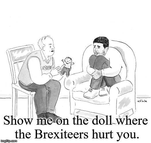 Show me on the doll where the Brexiteers hurt you. | image tagged in brexit doll | made w/ Imgflip meme maker