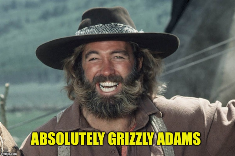 ABSOLUTELY GRIZZLY ADAMS | made w/ Imgflip meme maker