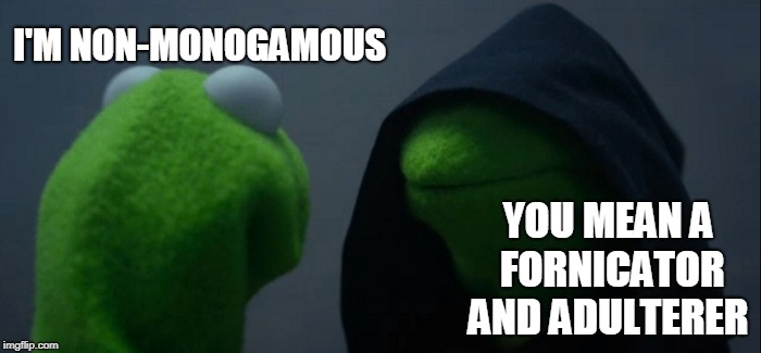 Evil Kermit Meme | I'M NON-MONOGAMOUS YOU MEAN A FORNICATOR AND ADULTERER | image tagged in memes,evil kermit | made w/ Imgflip meme maker