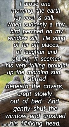 Bird Poem ~ Author Unknown | I  arose  one  morning,  the  earth  lay  cool  &  still.   When  suddenly  a  tiny  bird  perched  on  my  window  sill.   He  sang  of  fa | image tagged in birds,poetry,funny memes | made w/ Imgflip meme maker